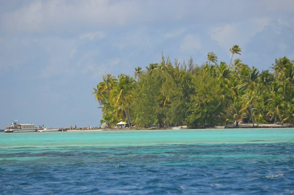 tahaa-from-the-tender